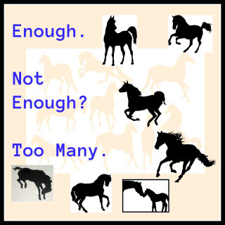 Enough Horses? Or too many? Too Little?