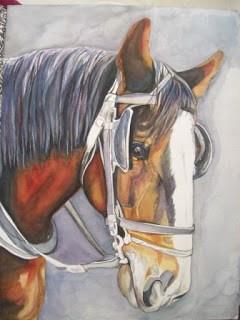 Buggy Horse Portrait 'Work in Progress' III