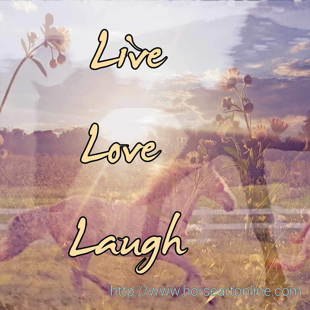 live love laugh horse meme