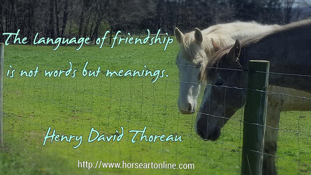 horse quote memes
