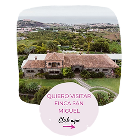 Finca (12)_preview_rev_1.png