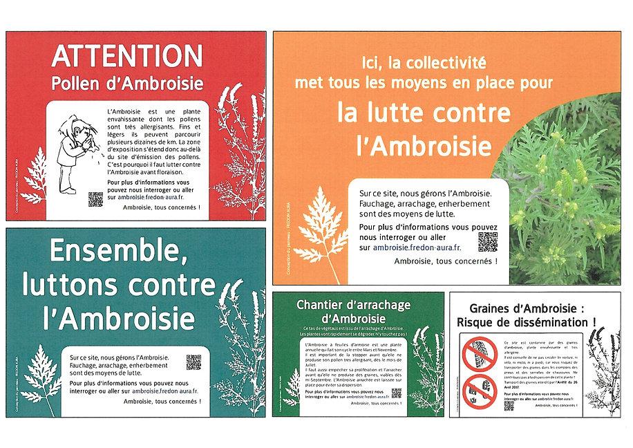 Ambroisie.jpg