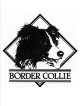 BCCS logo.JPG