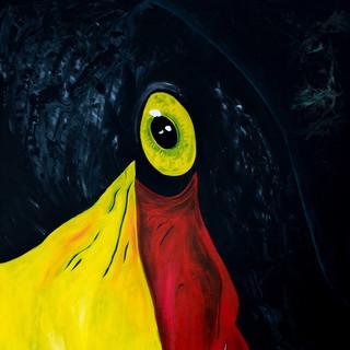 Rob's Sadly-Billed Stork