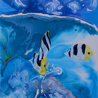 Blackwedged Butterfly Fish
