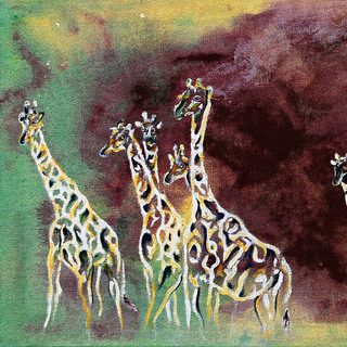 Eight Giraffes