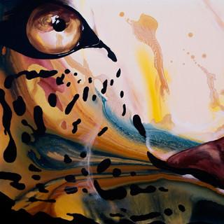 Through the Eye of my Leopard