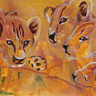 Five Lion Cub's