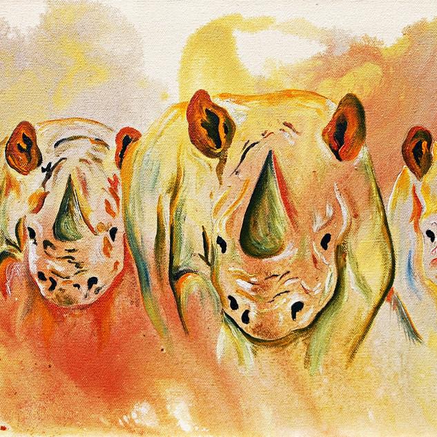 Four Rhinos