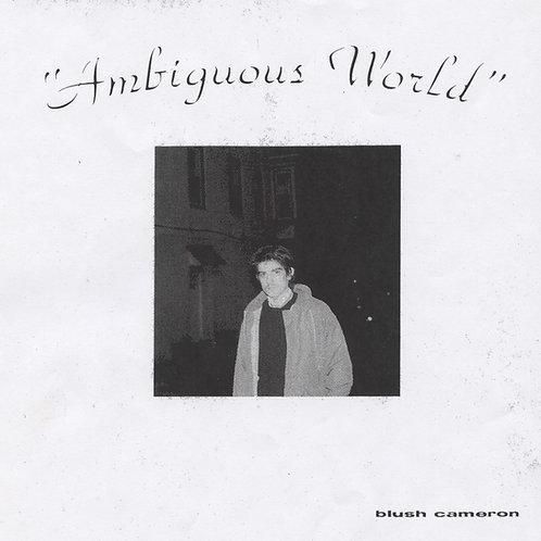 Blush Cameron - Ambiguous World