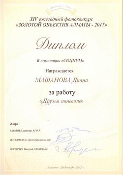 Диана Машанова (Номинация: Социум)