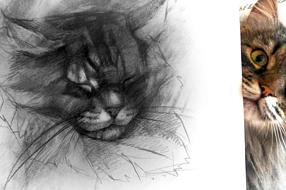 Урок рисования углем  для семьи и друзей