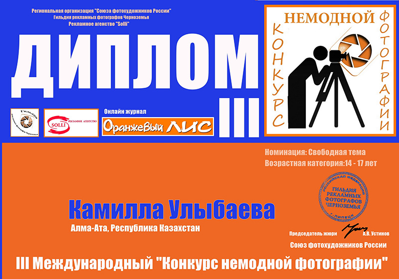 Камилла Утыбаева (Свободная тема) 14-17