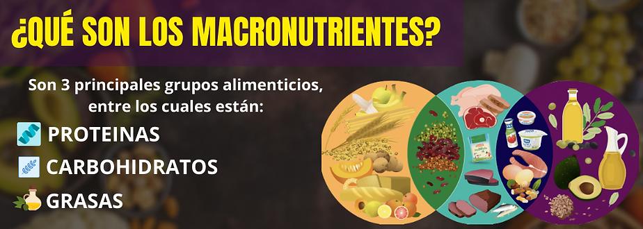 MACRONUTRIENTES BANNER.png