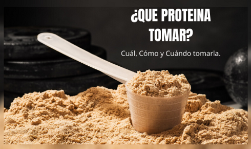 QUE PROTEINA TOMAR (1).png