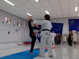 Taekwondo Unidade Jandaia