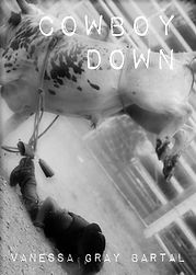 cowboy down cover.jpg