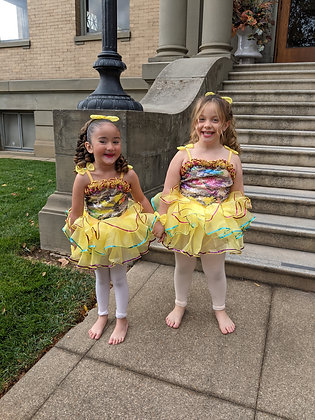 """""""Royal Intro to Ballet & Acro"""" (Or """"Dance With Me"""") Single Class Pass"""