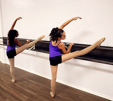 Barre Ballet (Open Level)