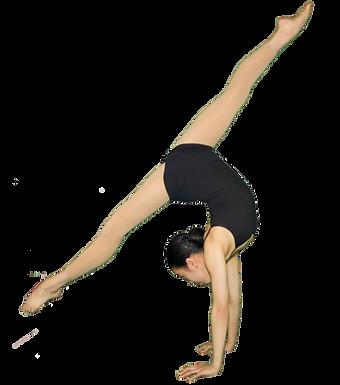 Acrobatic Arts Level 3+