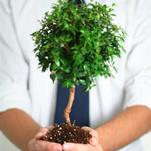 Groene investeringen geven fiscaal voordeel
