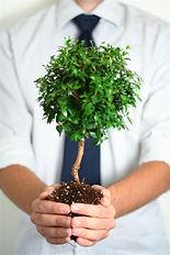 Mann hält einen kleinen Baum in den Händen - Wachstum, Nachhaltigkeit
