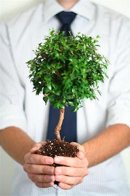 Präventionsmaßnahmen, Wachstum