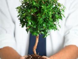 Tip #9: Ensure That People Grow in Their Jobs