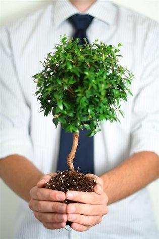 planting a tree, doing something worthwhile