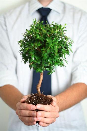 כל עסק חייב ביזיקארד - ירוק, חסכוני ומרשים