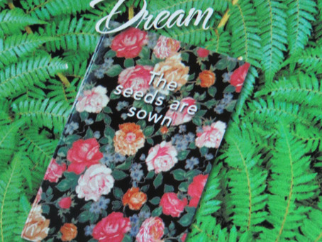The New Zealand Dream, The seeds are sown review