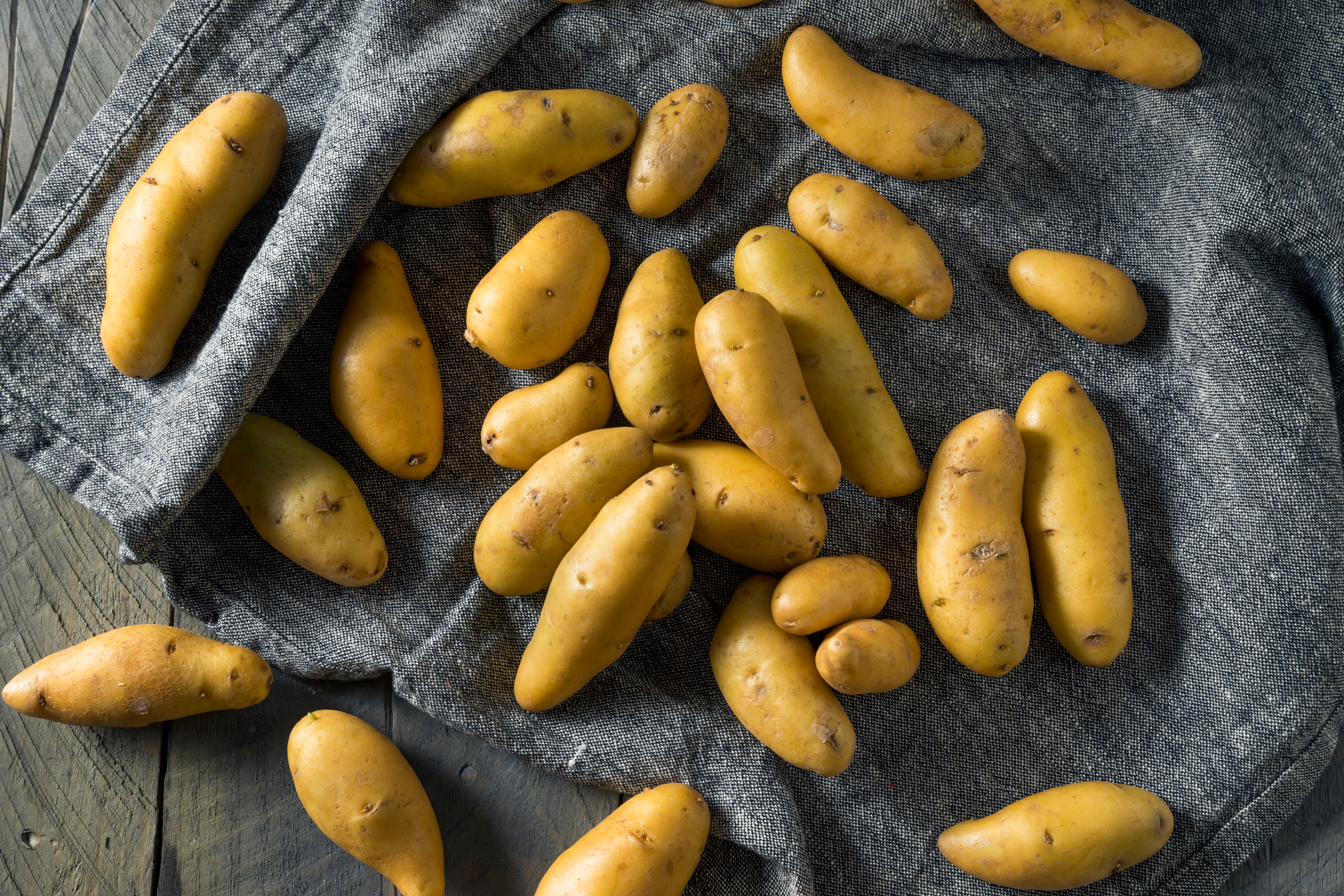 Raw Yellow Fingerling Potatoes Ready to
