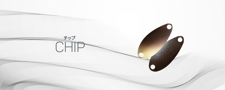 chip_bn#2.jpg