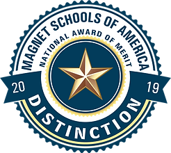 MSA-AWARD-DISTINCTION-2019.png