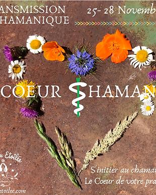 Coeur Shaman Sept 2021.png
