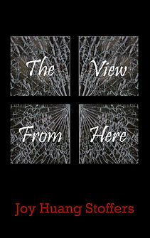 The View from Here cover image.jpg