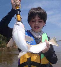 pescaria no rio araguaia