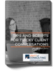 CraftofConsulting-Report-TipsandScripts-
