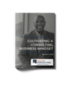 Cultivating%20a%20Consulting%20Business%
