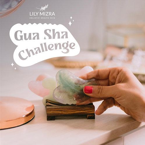Gua Sha Challenge by Lily Mizra