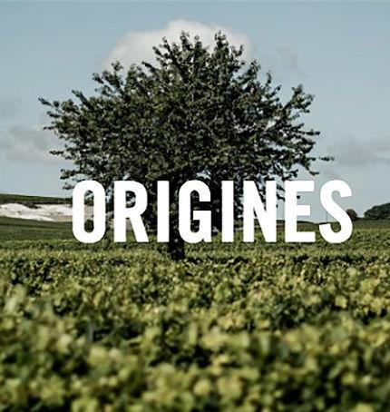 cognac-bnic jr-agence-contenu-paris