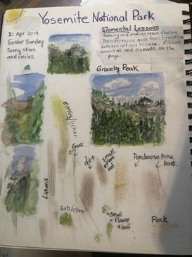 Natural Plant Materials
