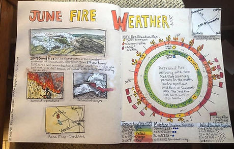 Fire Weather Wheel and Neighboring Wildfire Observations