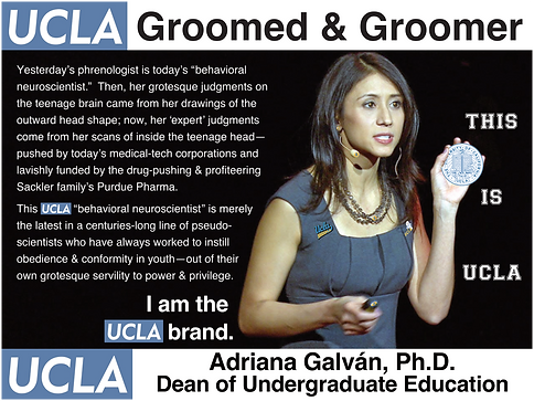UCLA Dean, Adriana Galvan