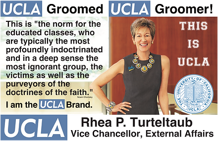UCLA Vice Chancellor, External Affairs: Rhea Turteltaub