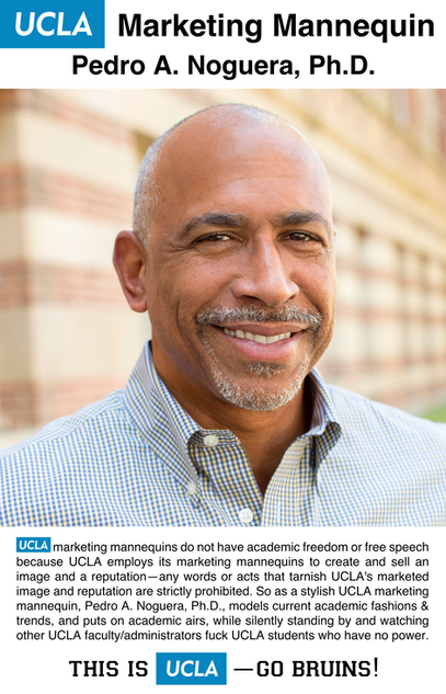 Pedro A. Noguera, Ph.D. | UCLA Graduate School of Education