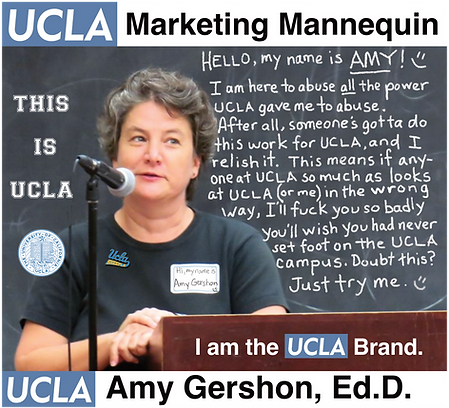 Amy Gershon, UCLA GSE&IS