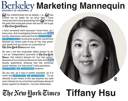 Tiffany Hsu, NYT (The New York Times)