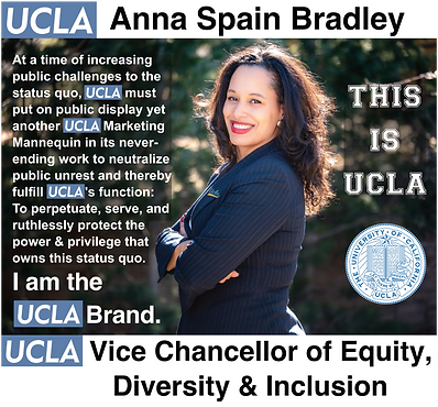 UCLA Vice Chancellor of Equity, Diversity and Inclusion | Anna Spain Bradley