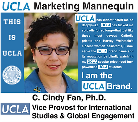 C. Cindy Fan, UCLA Vice Provost for International Studies & Global Engagement